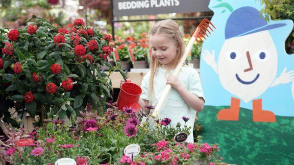 Little Seedlings Club
